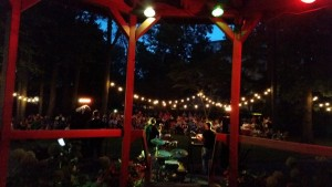 Double Dave Trio – Hegeler Carus Summer Sunset Concert Series @ Hegeler Carus Mansion | LaSalle | Illinois | United States